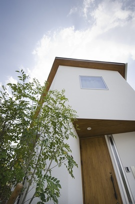 白を基調に「木」が映えて見える家。